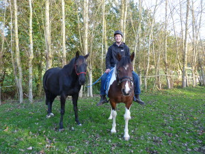 Horse Tip #1309 – Bringing A Horse Back Into Work with Emily Thompson – by Purina Mills