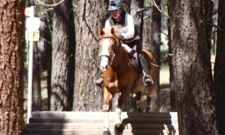 07-11-2016 by Omega Alpha Equine – Zeus Makes Eventing Fun Again, Electrolytes & BCAA, Horse Nation