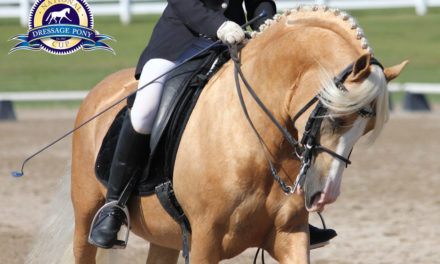 Dressage 371 – National Dressage Pony Cup, Prix St. George and More Jump