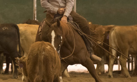 Horsemanship 71 by Index Fund Advisors IFA.com – Al Dunning and Monty Roberts on Western Reining and Mitch Bornstein of Last Chance Mustang