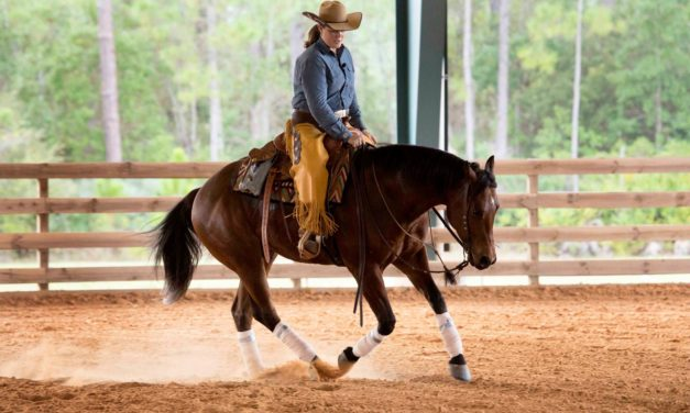 HITM 09-08-2016  Mary Kitzmiller Training by Horseware – Horse Education Company, Starting the Side Pass, Trailer UN-Loading and More