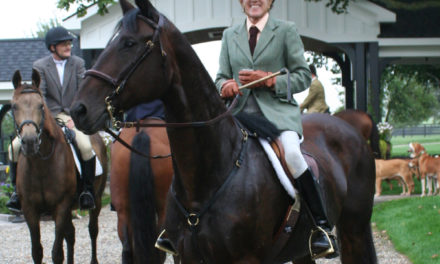 Stable Scoop 420 by Horseloverz.com – Auditor Lynn Popa, Setting Boundaries and Equine Couture