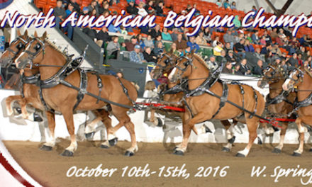 10-06-2016 by Clydesdale Breeders – Draft Horse Journal Presents Belgian Champs, Building Wagons and Trainer Cathy Zahm