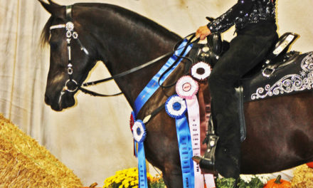 Dressage 387 – Western Dressage World Champions Beaudry and Berger, Lazy E Arena