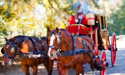 Driving 274 – Colonial Williamsburg Adding Horses and the Kentucky Classic CDE