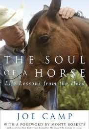 Horsemanship 76 by Index Fund Advisors IFA.com – The Soul of A Horse Author Joe Camp, Julie Driver on Pilates for Riders