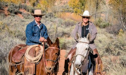 01-24-2017 by Horseware – Ty Evans Mule Trainer, Western Heritage Cattle Drive, Anti-Soring Act Update from Horse Nation