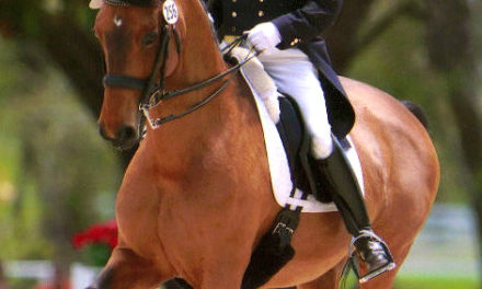 Dressage 406 – Warren and McMullin on Judges Perspective, Joint Support, Longer Legs Please