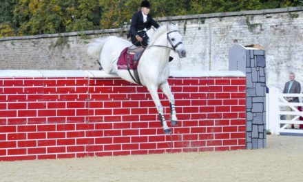 Stable Scoop 462 – World Record Side Saddle Rider Susan Oaks
