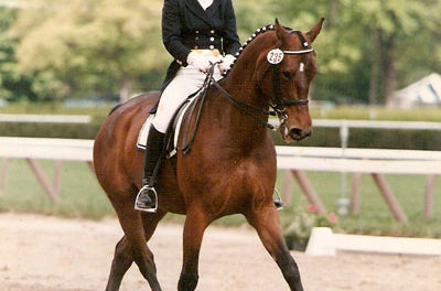 Dressage 421 – Dissecting the Walk Pirouette with Sarah Geikie