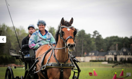 Driving 299 – Pony World Championships, the US Equestrian USEF Director of Driving and Summer Sores