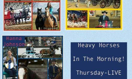 HITM 07-06-17 by 2018 World Clydesdale Show – Youth – The Future of the Heavy Horse Industry