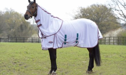 Horse Tip 1301 – Fly Sheets Questions Answered with Maddie