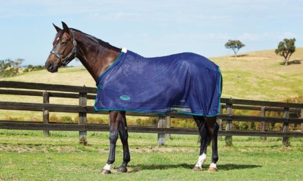 Horse Tip 1302 – Scrim Sheets and Anti-Sweat Sheets with Maddie