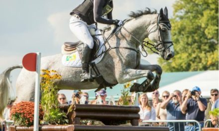 Eventing 473 by Bit of Britain – Burghley Winner Townend, AEC Advanced Winner Matt Brown, Novice Champ Bailey Snyder with Max & Joe
