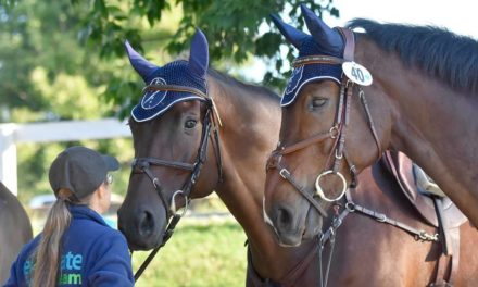 HITM for 09-29-17 – Gabriella Live from Dubai, Top Notch Palomino Horse, International Podcast Day – by Kentucky Performance Products