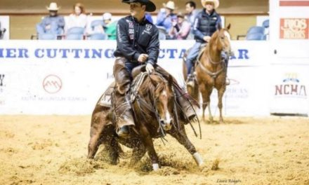 HITM for 10-24-17 – Fletcher Street Urban Riding Club, Reined Cowhorse, Cowgirl in the Kitchen, Better Photos – by Horseware