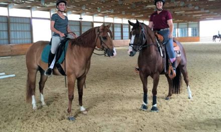 Dressage 440 – Stacy Westfall, Dressage Q&A and Feeding for Energy