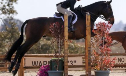Plaidcast Junior #12 by Stable Secretary – Lauren Aubert on Apparel for Showing and Schooling